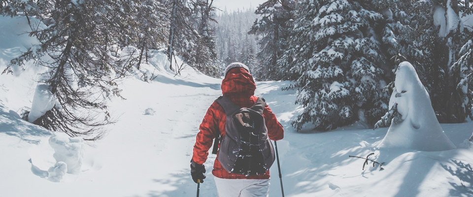 Outdoor winter sports - and how you can train for them at the club